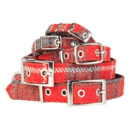 Hundehalsband aus Tweed - Harris