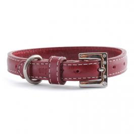 Hundehalsband Leder - Pixie Collection - rot, hellblau