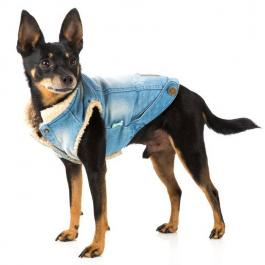 Hundejacke - Denim